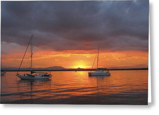 Greeting Card featuring the digital art Sailboats At Anchor by Anne Mott