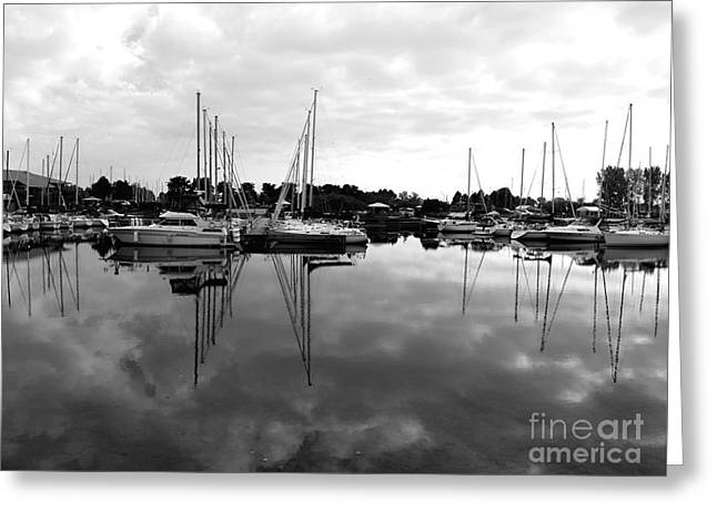 Sailboats At Bluffers Marina Toronto Greeting Card