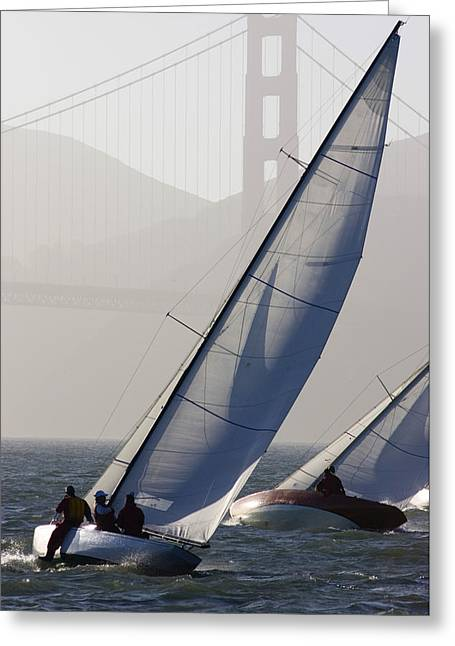 Sailboats Race On San Francisco Bay Greeting Card by Skip Brown