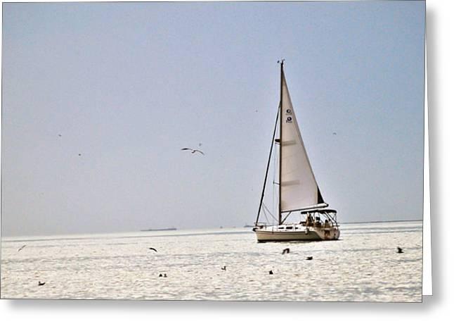Sailing Greeting Card by Anusha Hewage