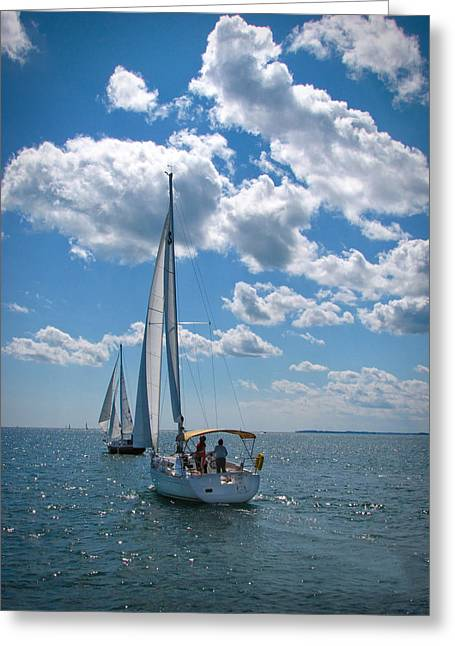 Greeting Card featuring the photograph Sailing by Cindy Haggerty