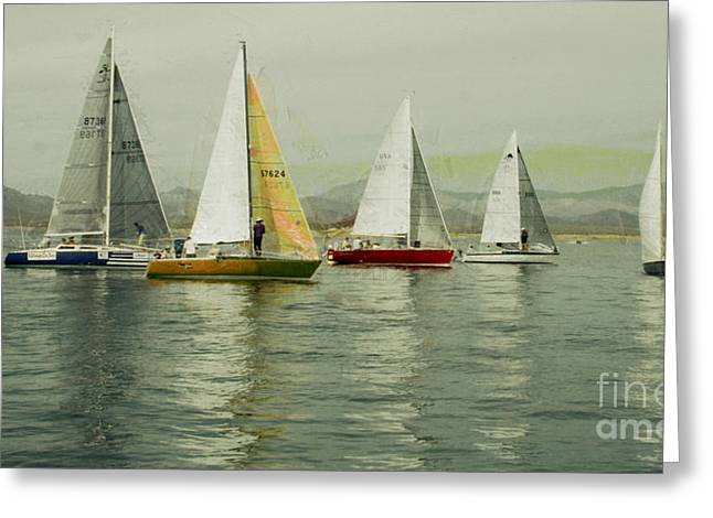 Sailing Day Regatta Greeting Card by Julie Lueders