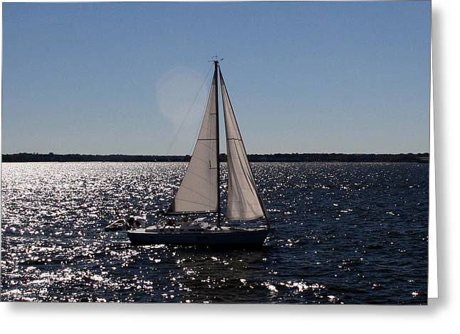 Sailing On The Bay2 Greeting Card