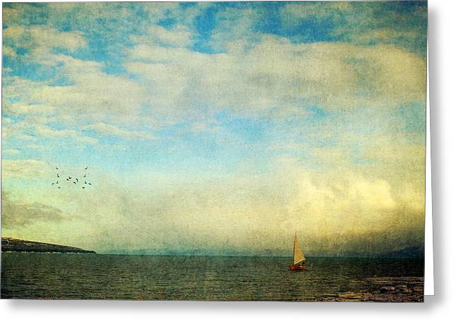 Greeting Card featuring the photograph Sailing On The Sea by Michele Cornelius