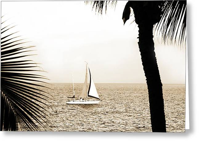 Sailing The Pacific Greeting Card by Marilyn Hunt