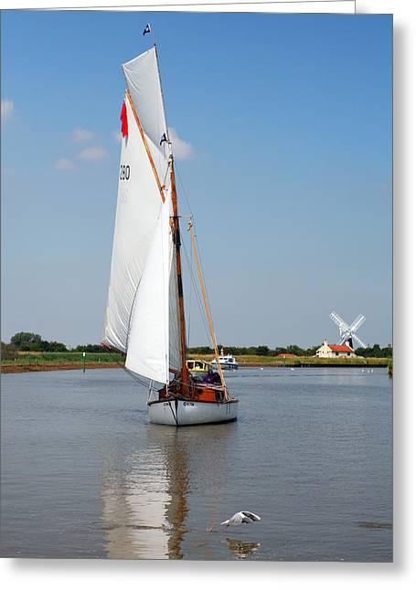 Sailing The Yare Greeting Card by Paul Cowan