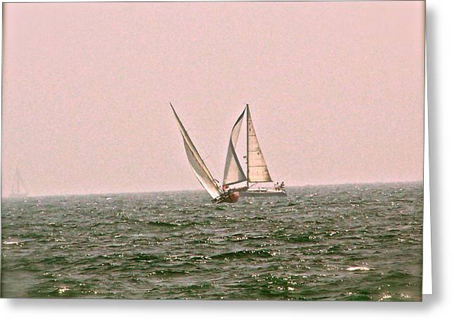 Sails Greeting Card by Amber Hennessey