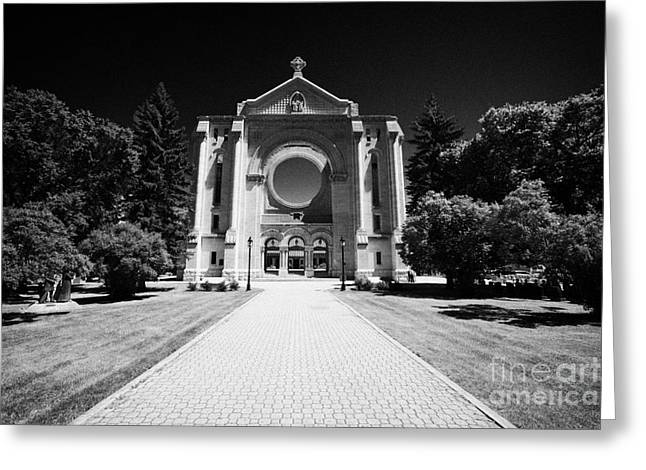 Saint Boniface Cathedral French Quarter Winnipeg Manitoba Canada Greeting Card by Joe Fox