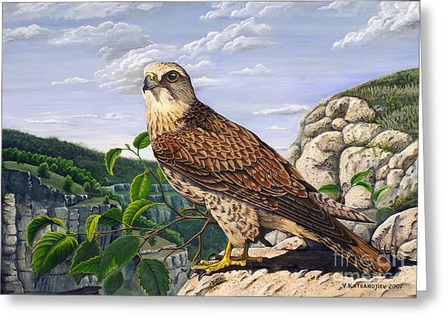 Saker Falcon Falco Cherrug Greeting Card