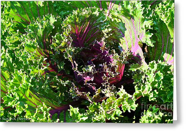 Salad Maker Greeting Card by Susan Herber