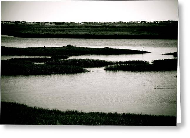 Salt Marsh Greeting Card by Jez C Self