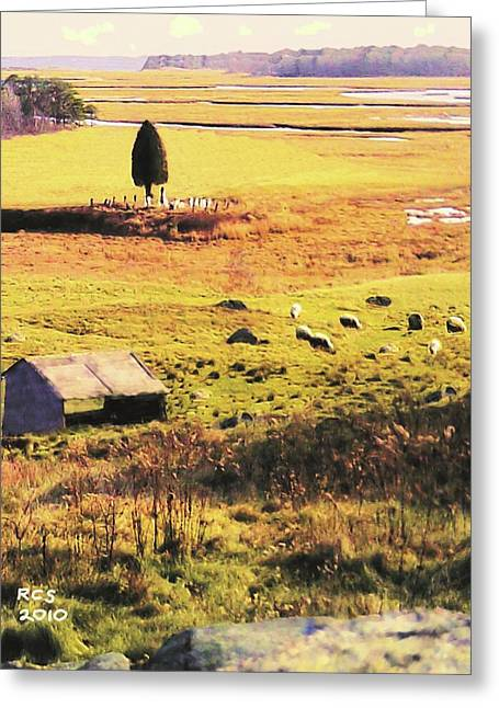 Salt Marsh Pasture Greeting Card by Richard Stevens
