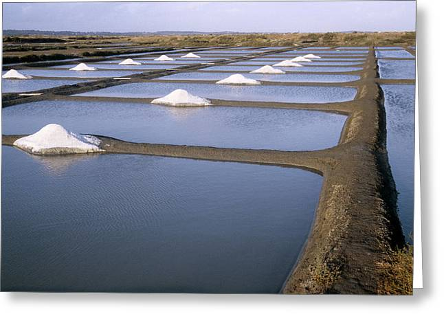 Salt Pans Greeting Card by Veronique Leplat