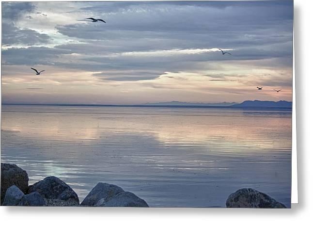 Salton Sea Sunset Greeting Card by Linda Dunn