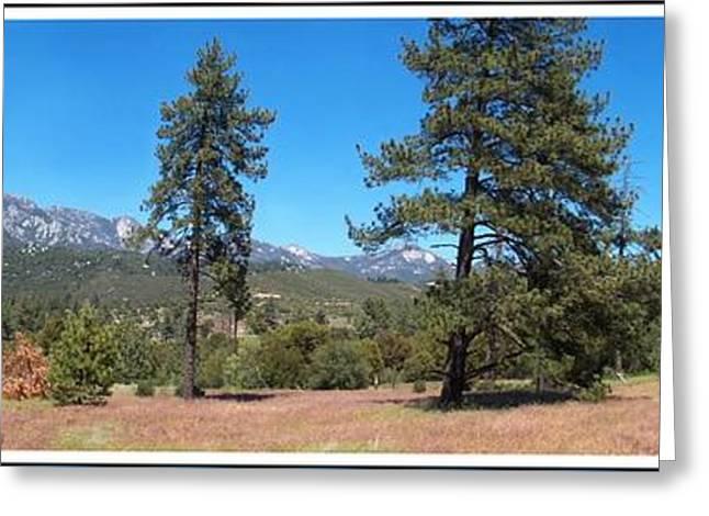 San Bernardino Forest Vista Greeting Card