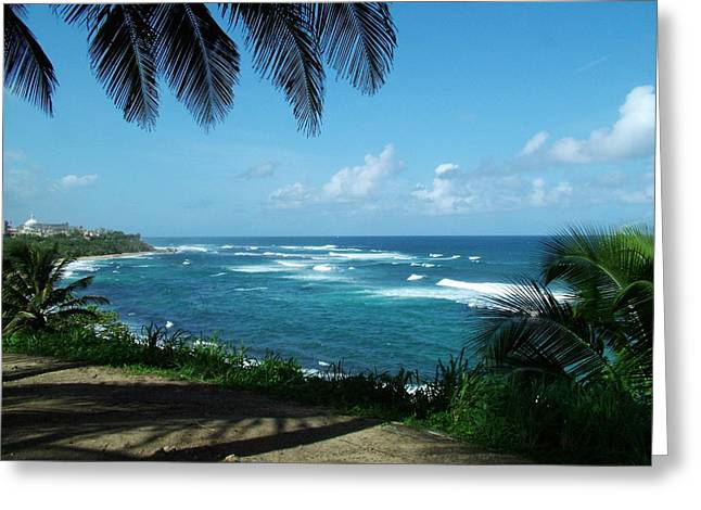 San Juan Puerto Rico Greeting Card by Steve Monell