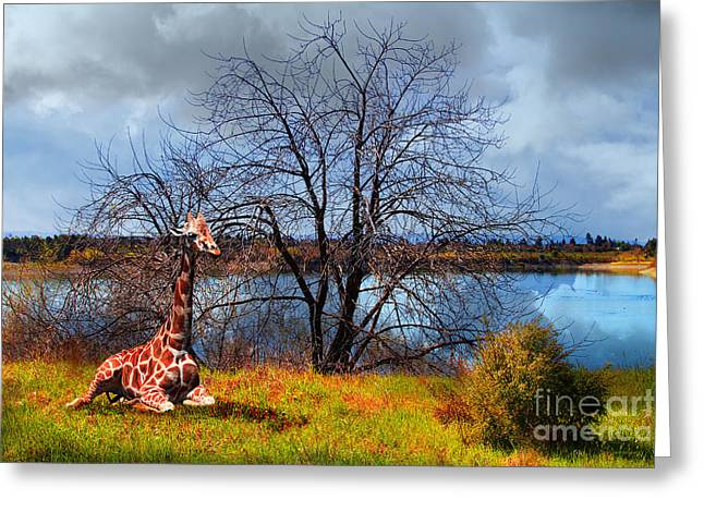 Sanctuary . 7d12636 Greeting Card by Wingsdomain Art and Photography
