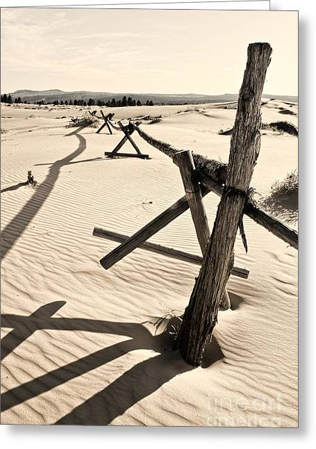 Sand And Fences Greeting Card