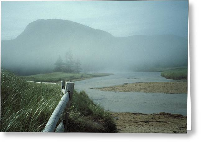 Sand Beach Fog Greeting Card by Brent L Ander