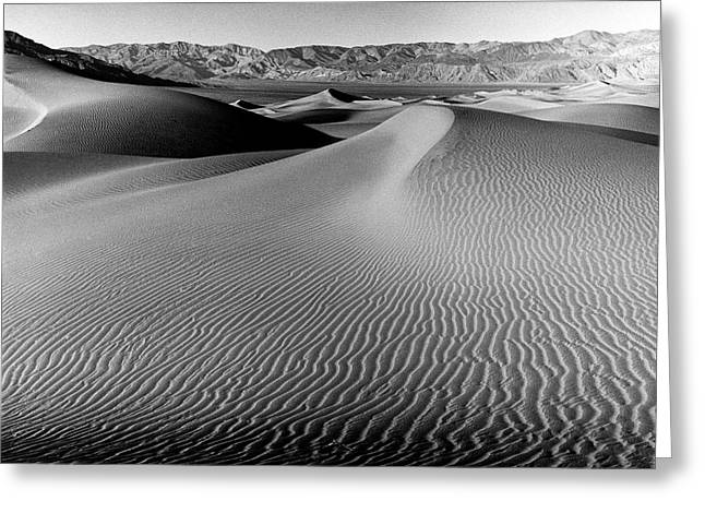 Sand Dune-death Valley Greeting Card