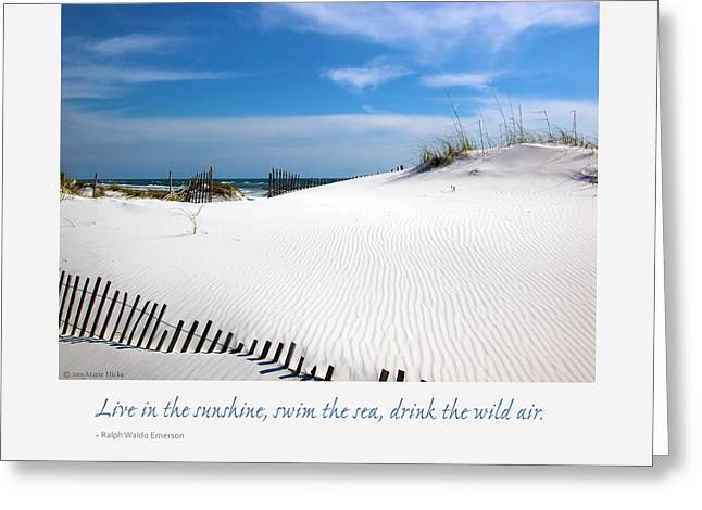 Sand Dunes Dream 3 Greeting Card by Marie Hicks