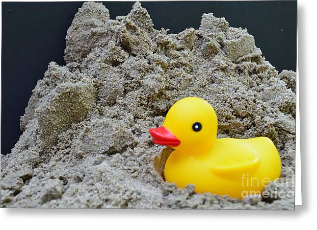 Sand Pile And Ducky Greeting Card