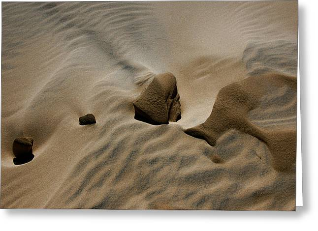 Sand Texture At Kelso Greeting Card by Chris Brannen