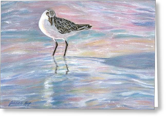 Sandlinger At Sunset Greeting Card by Jeanne Kay Juhos