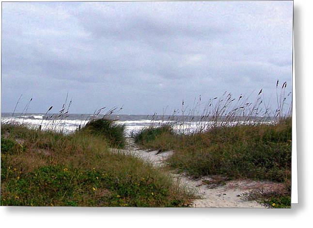 Sandy Path To The Beach Greeting Card by Patricia Taylor