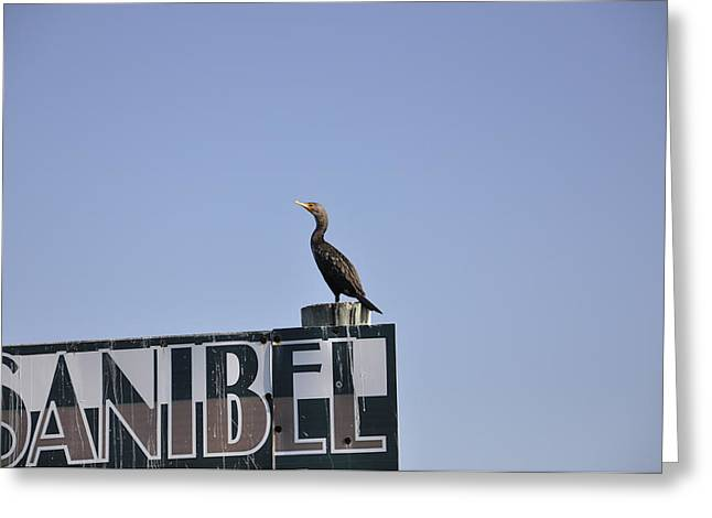 Sanibel Greeting Card