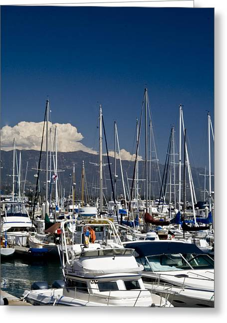 Santa Barbara Harbor Greeting Card by Gary Brandes