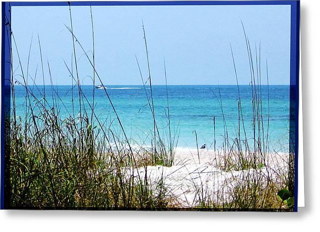Sarasota Bay At Longboat Beach Greeting Card by Ginny Schmidt