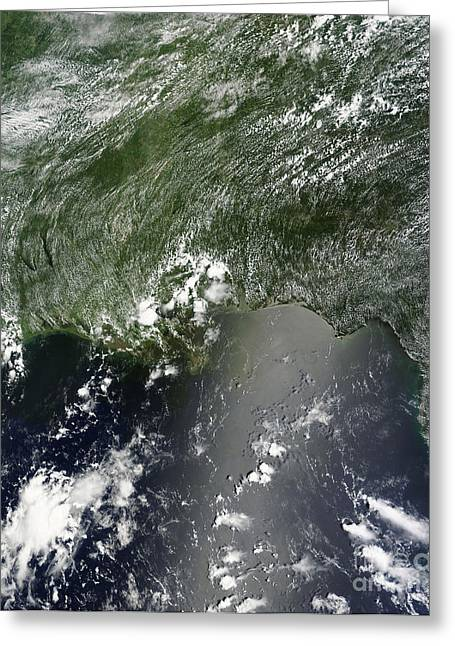 Satellite View Of The Gulf Of Mexico Greeting Card by Stocktrek Images