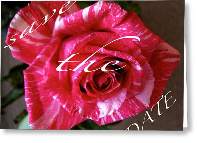 Save The Date Cards Greeting Card by Debra     Vatalaro