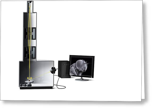 Scanning Electron Microscope, Artwork Greeting Card by Claus Lunau