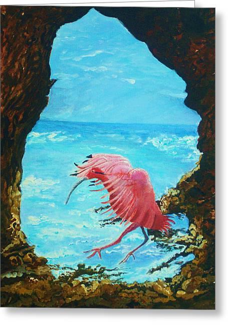 Scarlet Ibis Landing Greeting Card by Joy Braverman