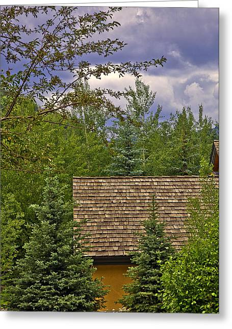 Scene Through The Trees - Vail Greeting Card by Madeline Ellis
