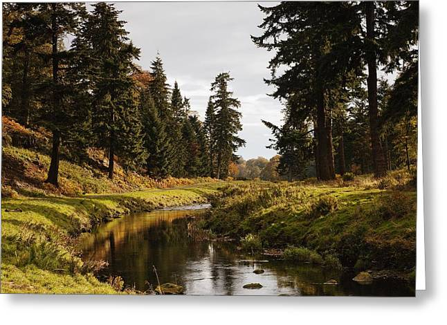 Scenic River, Northumberland, England Greeting Card