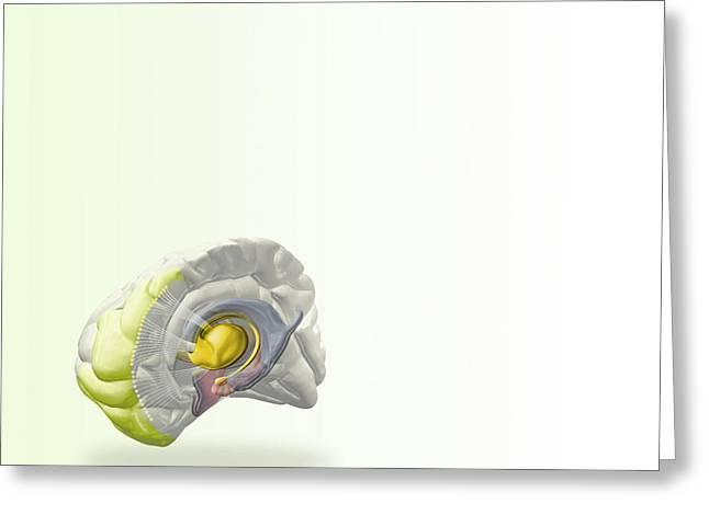 Schizophrenia, Computer Artwork Greeting Card