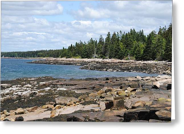 Schoodic Peninsula  Greeting Card by Steven Scott