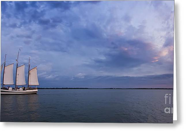 Schooner Pride Sunset Charleston Sc Greeting Card