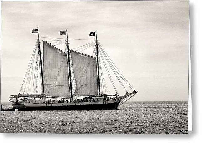 Schooner Victory Chimes 2012 Greeting Card