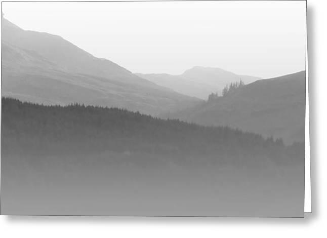 Scotch Mist Greeting Card by Lynn Bolt