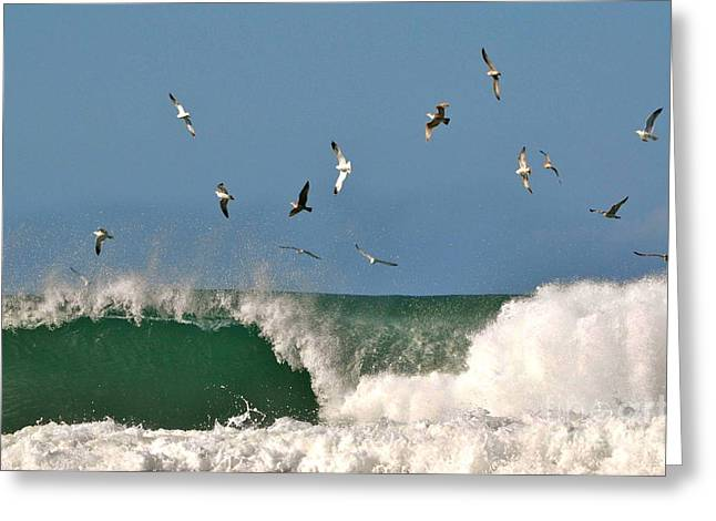 Greeting Card featuring the photograph Sea And Spray by Johanne Peale