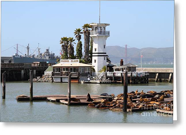 Sea Lions At Pier 39 San Francisco California . 7d14294 Greeting Card