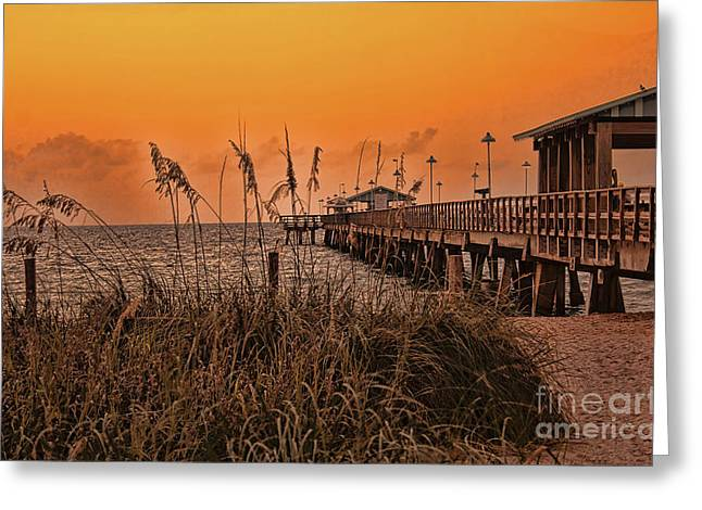 Sea Oats At Dawn Greeting Card by Anne Rodkin