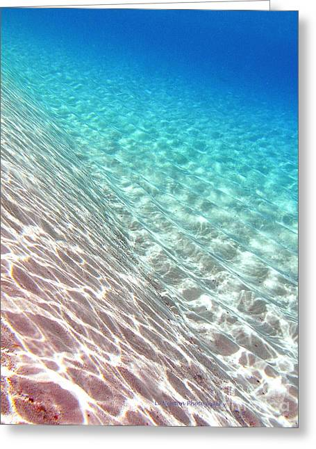 Sea Of Tranquility Greeting Card by Li Newton