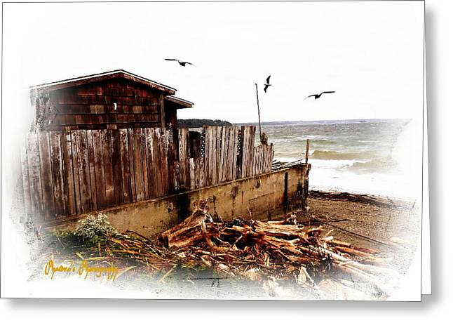 Sea Shanty Greeting Card by Sadie Reneau