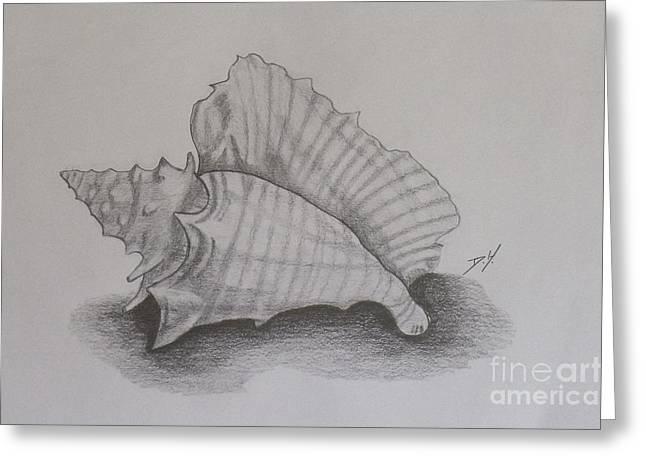 Sea Shell Greeting Card by Debra Piro