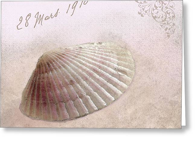 Sea Shell In Pink Greeting Card by Betty LaRue